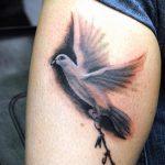 фото тату голубь №678 - достойный вариант рисунка, который хорошо можно использовать для доработки и нанесения как тату на груди голуби