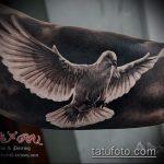 фото тату голубь №176 - уникальный вариант рисунка, который успешно можно использовать для преобразования и нанесения как тату голубь с гранатой