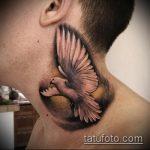 фото тату голубь №725 - эксклюзивный вариант рисунка, который легко можно использовать для переделки и нанесения как тату голубь на руке
