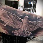 фото тату голубь №501 - прикольный вариант рисунка, который успешно можно использовать для переделки и нанесения как тату белый голубь