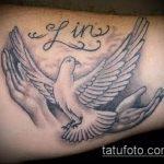 фото тату голубь №704 - интересный вариант рисунка, который успешно можно использовать для переработки и нанесения как тату на шее голуби