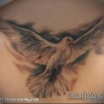 фото тату голубь №593 - классный вариант рисунка, который легко можно использовать для преобразования и нанесения как тату голубь на руке