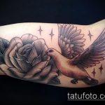 фото тату голубь №185 - прикольный вариант рисунка, который успешно можно использовать для переработки и нанесения как тату голубь на руке