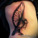 фото тату голубь №231 - интересный вариант рисунка, который удачно можно использовать для переработки и нанесения как тату на шее голуби