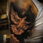 фото тату голубь №83 - интересный вариант рисунка, который легко можно использовать для переделки и нанесения как тату белый голубь