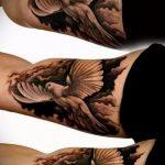 фото тату голубь №219 - достойный вариант рисунка, который легко можно использовать для переделки и нанесения как тату на груди голуби