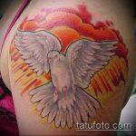 фото тату голубь №13 - интересный вариант рисунка, который успешно можно использовать для переработки и нанесения как тату белый голубь