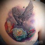 фото тату голубь №944 - крутой вариант рисунка, который легко можно использовать для переделки и нанесения как тату на шее голуби