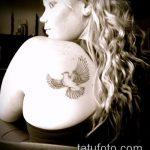 фото тату голубь №995 - эксклюзивный вариант рисунка, который успешно можно использовать для переделки и нанесения как тату голубь с крестом