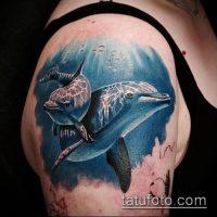 Фото тату дельфин