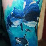 фото тату дельфин №622 - достойный вариант рисунка, который хорошо можно использовать для переработки и нанесения как фото тату дельфины на руке