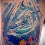 фото тату дельфин №721 - достойный вариант рисунка, который хорошо можно использовать для доработки и нанесения как фото тату дельфина на запястье