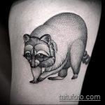 фото тату енот №843 - прикольный вариант рисунка, который хорошо можно использовать для доработки и нанесения как тату эскизы енот на плечо