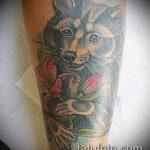 фото тату енот №936 - достойный вариант рисунка, который удачно можно использовать для переработки и нанесения как тату эскизы енот на плечо