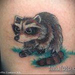 фото тату енот №959 - крутой вариант рисунка, который успешно можно использовать для преобразования и нанесения как фото тату енота на икре
