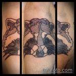 фото тату енот №853 - прикольный вариант рисунка, который успешно можно использовать для переработки и нанесения как тату эскизы енот на плечо