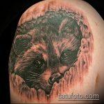 фото тату енот №562 - прикольный вариант рисунка, который удачно можно использовать для доработки и нанесения как фото тату енота на икре