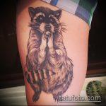 фото тату енот №790 - интересный вариант рисунка, который хорошо можно использовать для переделки и нанесения как фото тату енота на икре