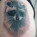 фото тату енот №280 - достойный вариант рисунка, который легко можно использовать для доработки и нанесения как фото тату енота на икре