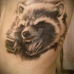 фото тату енот №369 - прикольный вариант рисунка, который хорошо можно использовать для переработки и нанесения как тату эскизы енот на плечо