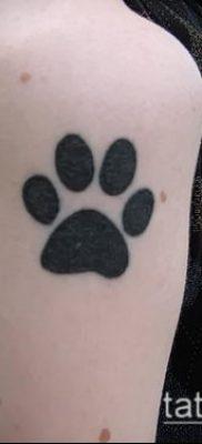 фото тату кошачьи лапки (значение) – пример интересного рисунка тату – 035 tatufoto.com