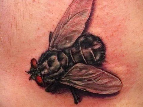 фото тату муха (значение) - пример интересного рисунка тату - 001 tatufoto.com
