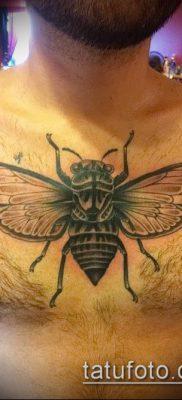фото тату муха (значение) – пример интересного рисунка тату – 010 tatufoto.com