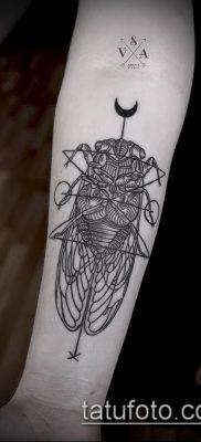 фото тату муха (значение) – пример интересного рисунка тату – 014 tatufoto.com