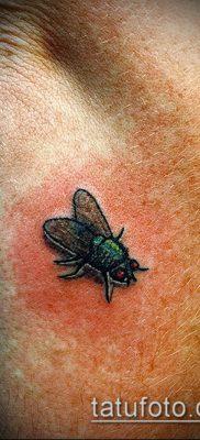 фото тату муха (значение) – пример интересного рисунка тату – 021 tatufoto.com