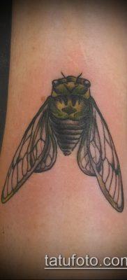 фото тату муха (значение) – пример интересного рисунка тату – 026 tatufoto.com