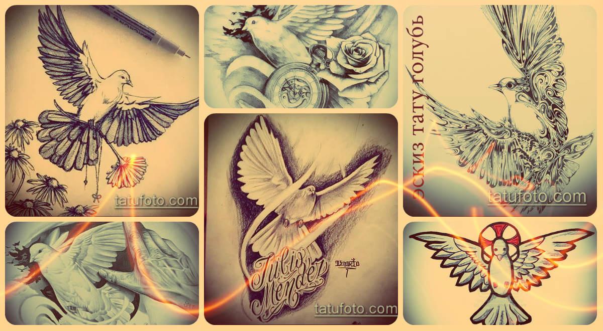 Примеры рисунков и интересные эскизы тату голубь - подборка