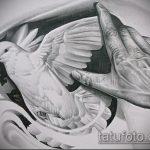эскиз тату голубь №901 - крутой вариант рисунка, который легко можно использовать для преобразования и нанесения как тату три голубя