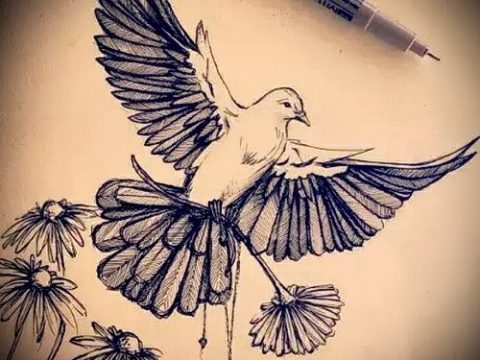 эскиз тату голубь №462 - достойный вариант рисунка, который легко можно использовать для переработки и нанесения как тату белый голубь