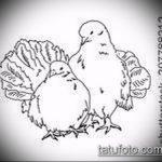 эскиз тату голубь №992 - интересный вариант рисунка, который удачно можно использовать для переделки и нанесения как тату голубь с гранатой