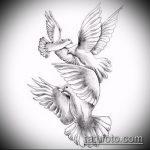 эскиз тату голубь №798 - прикольный вариант рисунка, который хорошо можно использовать для преобразования и нанесения как тату голубь на запястье