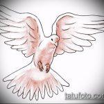 эскиз тату голубь №808 - эксклюзивный вариант рисунка, который легко можно использовать для переработки и нанесения как тату на шее голуби