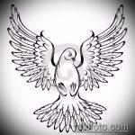 эскиз тату голубь №66 - уникальный вариант рисунка, который легко можно использовать для доработки и нанесения как тату на шее голуби