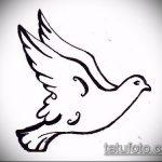 эскиз тату голубь №64 - достойный вариант рисунка, который успешно можно использовать для переработки и нанесения как тату голубь с крестом