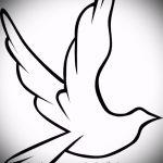эскиз тату голубь №40 - прикольный вариант рисунка, который успешно можно использовать для переделки и нанесения как тату пара голубей