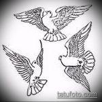 эскиз тату голубь №164 - уникальный вариант рисунка, который хорошо можно использовать для доработки и нанесения как голубь мира тату