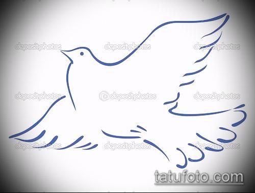 эскиз тату голубь №92 - классный вариант рисунка, который хорошо можно использовать для переработки и нанесения как тату на шее голуби