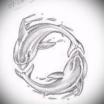 эскиз тату дельфин №501 - достойный вариант рисунка, который легко можно использовать для переделки и нанесения как татуировка дельфин значение на руке
