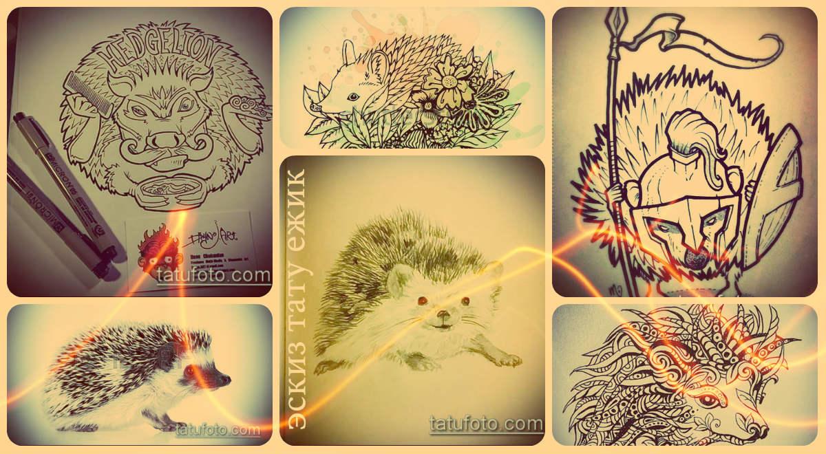 Эскизы тату ежик - крутые варианты рисунков для интересной татуировки