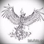 эскиз тату жар птица №933 - достойный вариант рисунка, который успешно можно использовать для переделки и нанесения как татуировка жар птица на спине