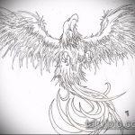 эскиз тату жар птица №827 - уникальный вариант рисунка, который удачно можно использовать для переделки и нанесения как татуировка жар птица на спине
