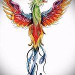 эскиз тату жар птица №466 - достойный вариант рисунка, который легко можно использовать для переделки и нанесения как татуировка жар птица на животе