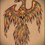 эскиз тату жар птица №609 - уникальный вариант рисунка, который удачно можно использовать для преобразования и нанесения как татуировка жар птица на животе