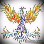 эскиз тату жар птица №282 - классный вариант рисунка, который удачно можно использовать для преобразования и нанесения как татуировка жар птица на бедре