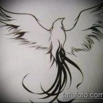 эскиз тату жар птица №354 - эксклюзивный вариант рисунка, который удачно можно использовать для доработки и нанесения как татуировка жар птица на животе