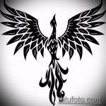 эскиз тату жар птица №5 - достойный вариант рисунка, который успешно можно использовать для переделки и нанесения как татуировка жар птица на животе